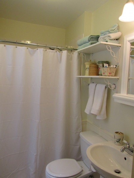 More thrifty bathroom--a nice shower curtain makes a big difference!