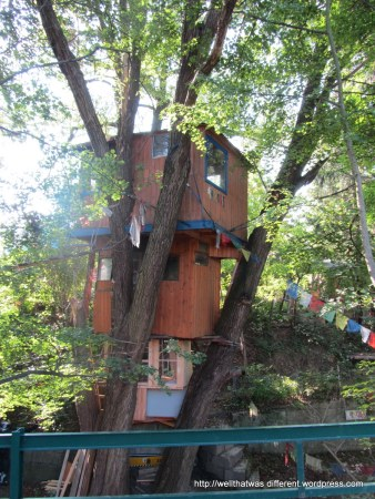 We passed this hilarious tree house on the way down.  So not Austrian!
