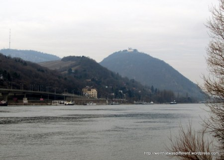 These knobby hills run along the river on the north side of the city.  That's the Leopoldkirche on top of the hill.