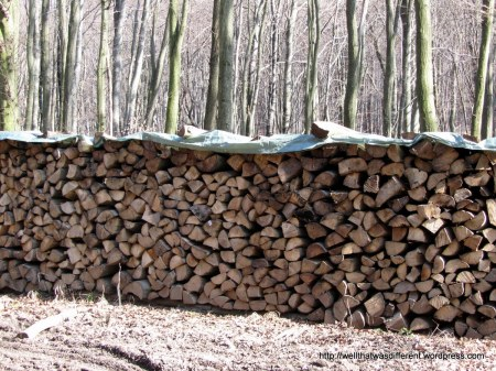 It seems that all that lumber is eventually turned into firewood.  Not sure who gets to burn it.