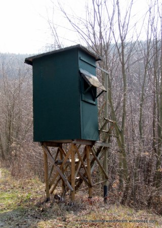 A hunting blind in the woods.  It overlooks a hiking trail, which is slightly off-putting.