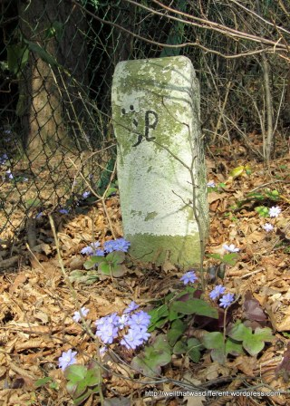 Not a tombstone, or at least I don't think so.  Just an old trail marker with some early spring flowers peeking out beside it.