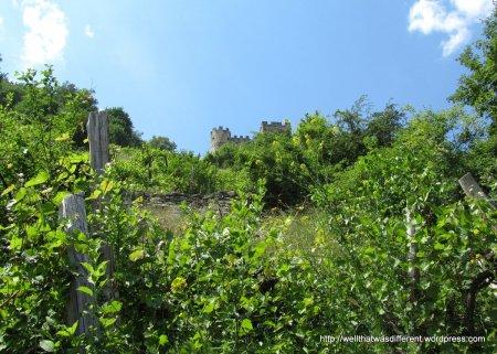 The ruins of Schloss Hinterhaus.