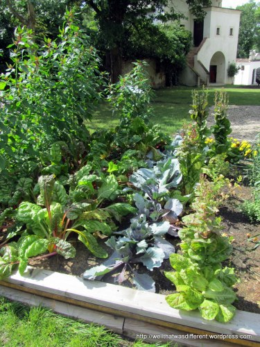 Renaissance-era kitchen garden.