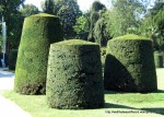 These topiaries crack me up.