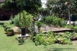 Tidy kitchen garden near the end of the season.