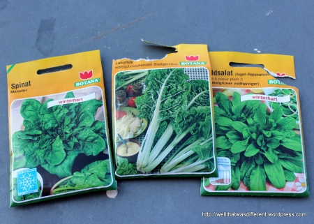 Spinach, chard and weeds.