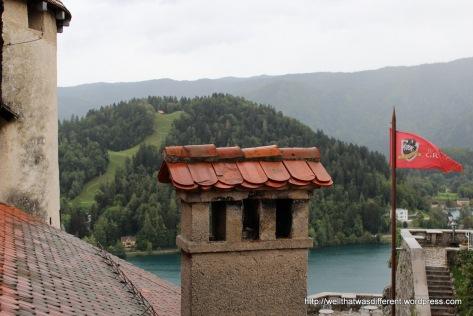 Overlooking the lake.