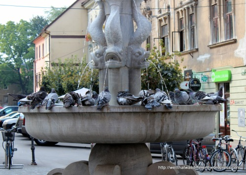 There are a LOT of pigeons. After I took this picture, a guy came and drank out of this fountain. YUCK.