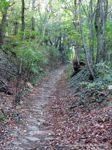 "This is the ""up"" part of the trail, at about a 45-degree angle. I think this may have been the old road up the mountain to the village at the top, because it is sort of paved with rocks. I would not like to try it in winter."