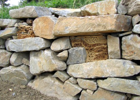 These nests were clearly started by humans in a stone wall that served no other real purpose.  We think they must be for some kind of beneficial wasp.