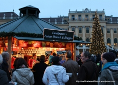 Lining up for Gluhwein at the Schonbrunn palace market.