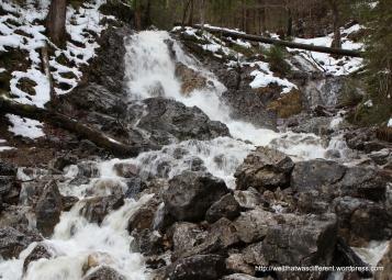 COLD mountain streams.