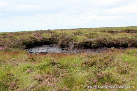 A peat bog. It's very black. I kept looking for a mummified hand sticking out of one, but no luck.