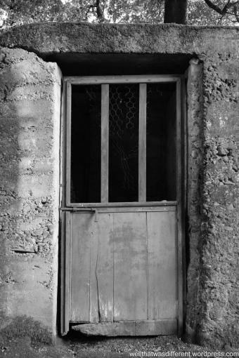 The Villa-mysterious door in the garden.