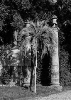 The Villa--in the gardens.