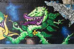 graffiti (6 of 34)
