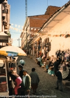 In the Mercado de Artesanias--llama and alpaca sweaters and silver jewelry were big things.