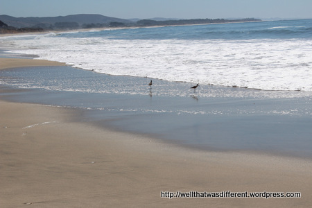 Half Moon Bay beach.