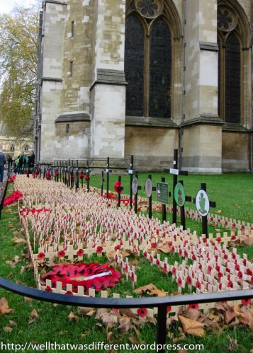 Remembrance Day poppies at the Abbey.