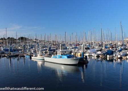 Monterey harbor.