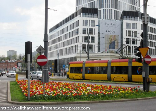 Early tulips in the full sun at Plac Unii. Did they pick the tulips to match the trams, I wonder?