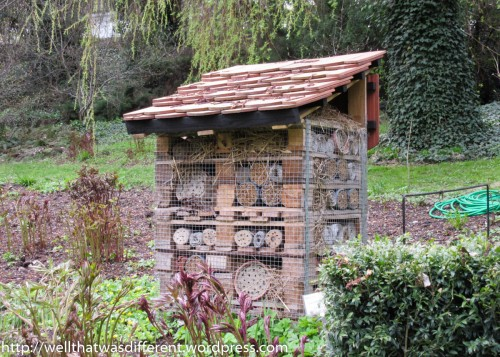 "I am fascinated by these houses, which are built to attract ""beneficial wasps."""