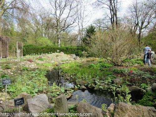 Very relaxing water garden.