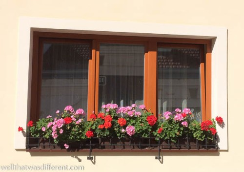 Geraniums in every window are a trademark of both Austria and the Czech Republic.